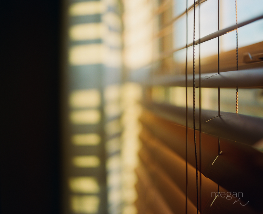 Window shades shot on medium format portra 400 in afternoon natural light