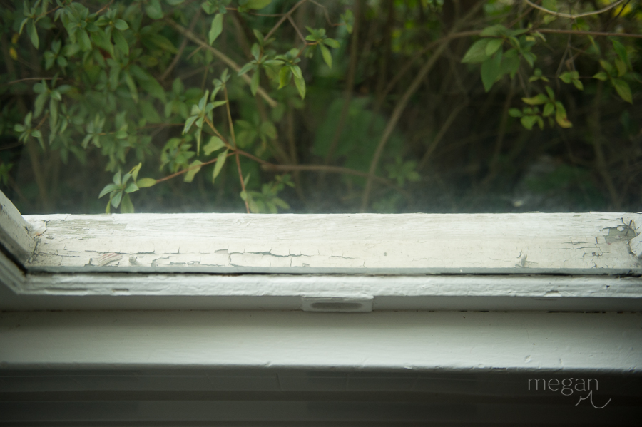 Window sill with peeling paint and shrubbery in natural light
