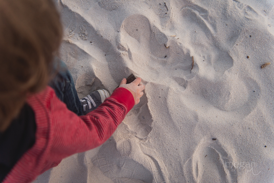 toddler hand digs in the sand on a beach