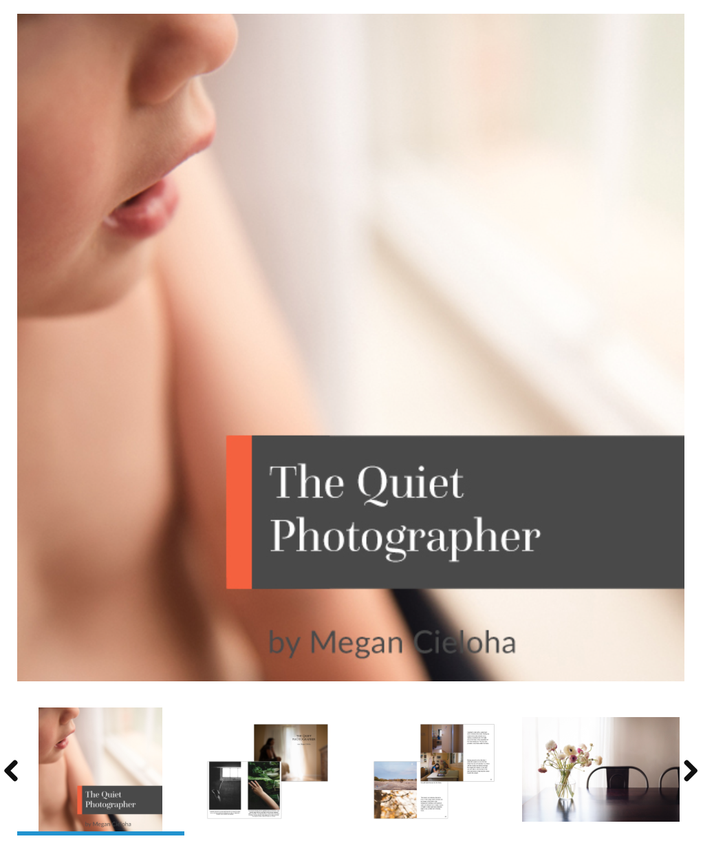 An awesome guide to being an observant photographer by Megan Cieloha.