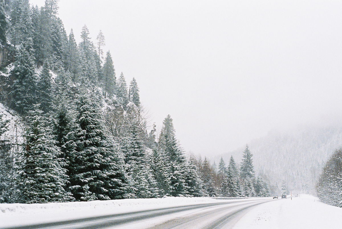 snow covered road and trees on fuji super 800 film by megan cieloha