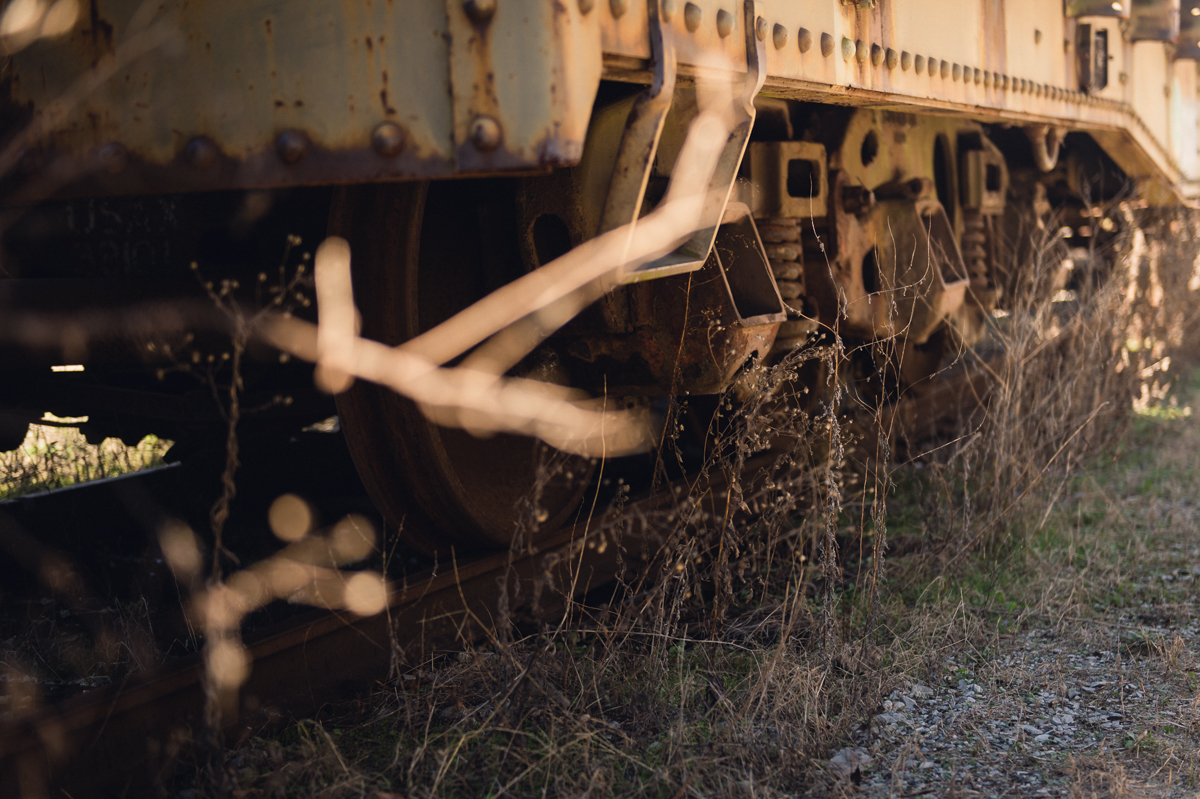 weeds grow beside old train picture by megan cieloha