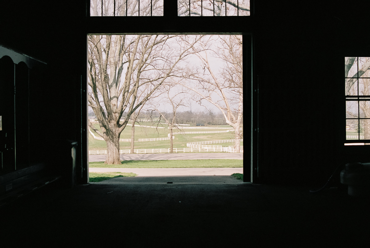 grounds of kentucky horse park from inside a barn portra 400 film image in natural light photo by megan cieloha
