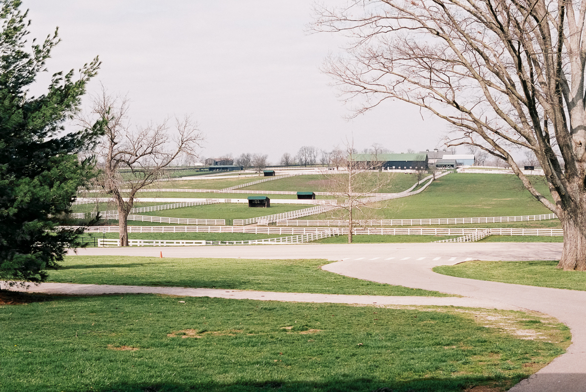 grounds of kentucky horse park portra 400 film image in natural light photo by megan cieloha