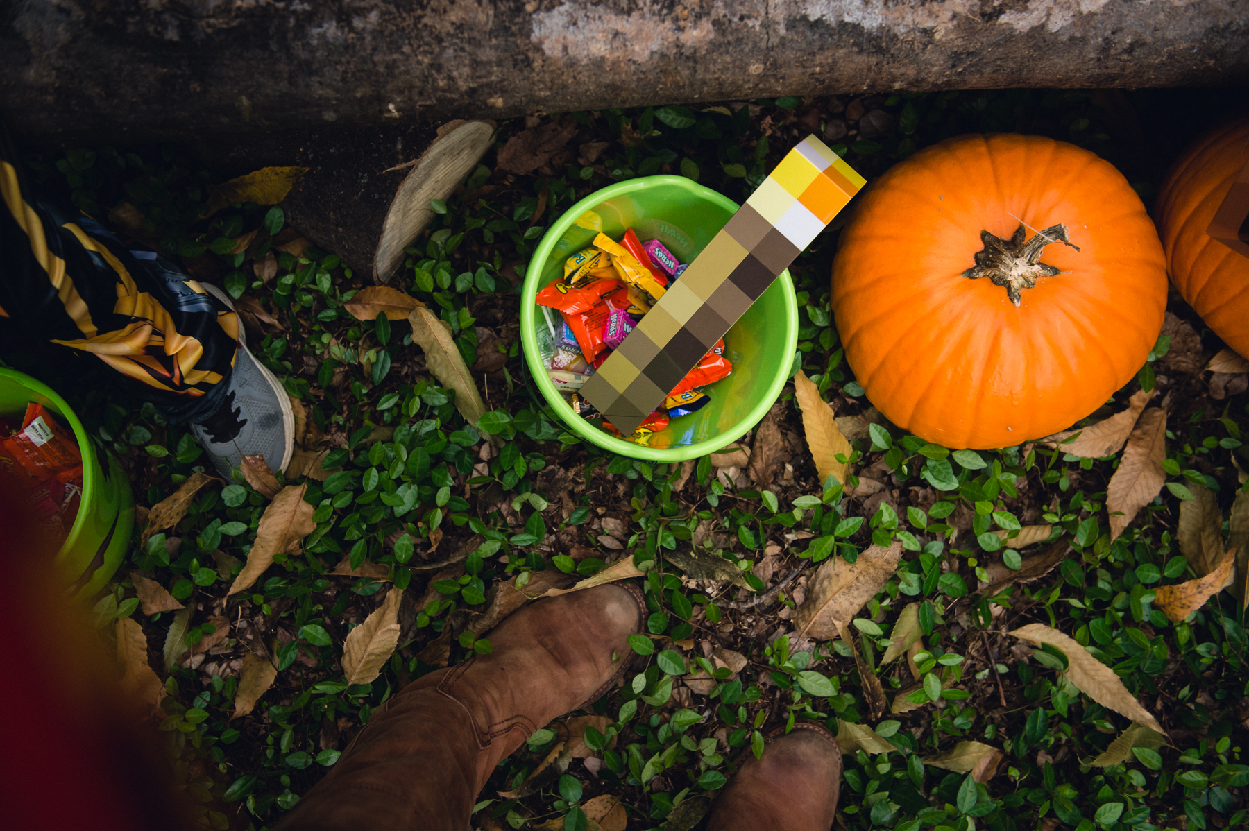 photo of halloween candy in bucket by a pumpkin by megan cieloha