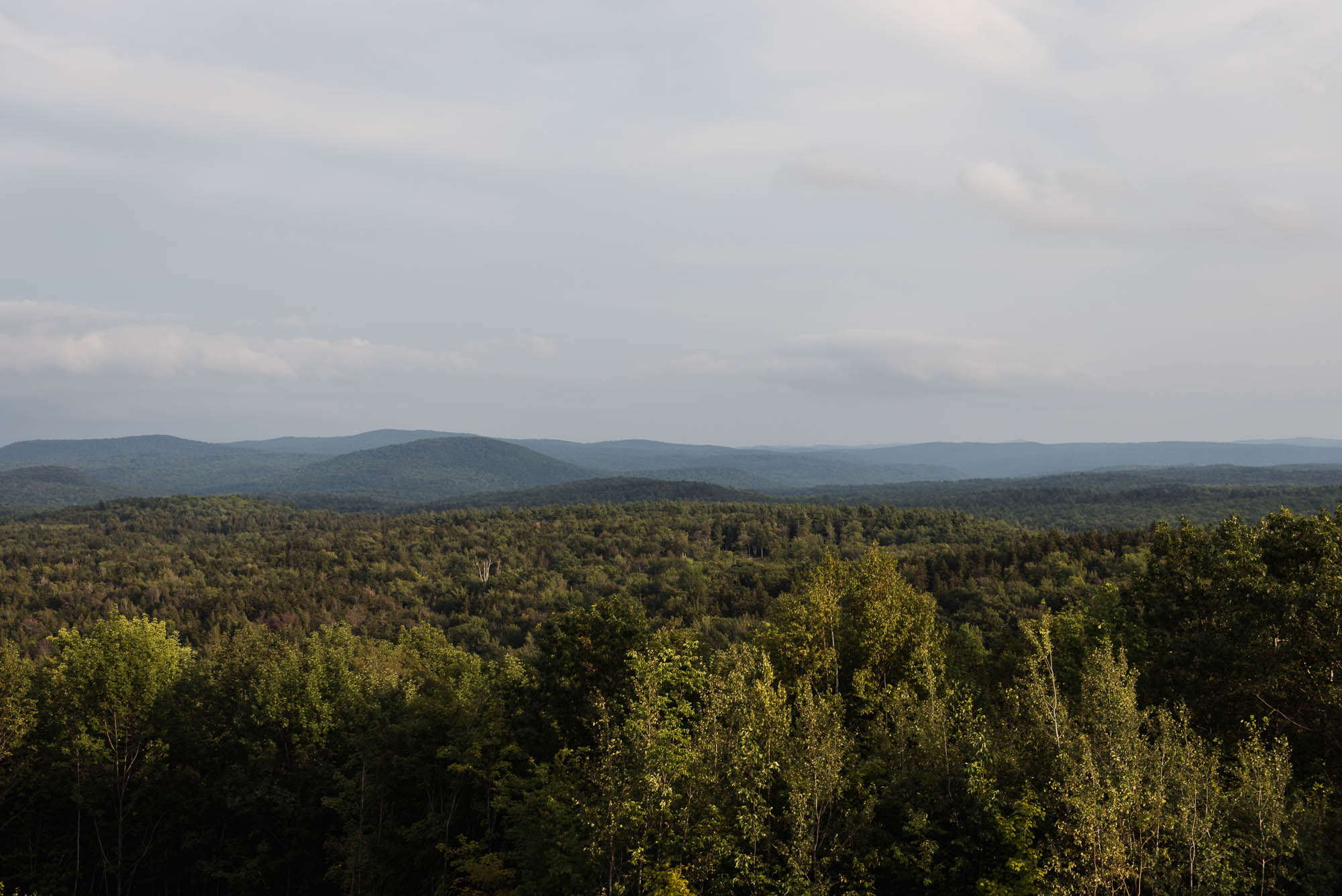 overlook across vermont forest from highway 101 picture by megan cieloha