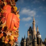 Family-and-kids-at-disney-world-magic-kingdom-Pictures-by-Megan-Cieloha